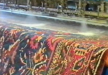 Rug Cleaning Ormond Beach